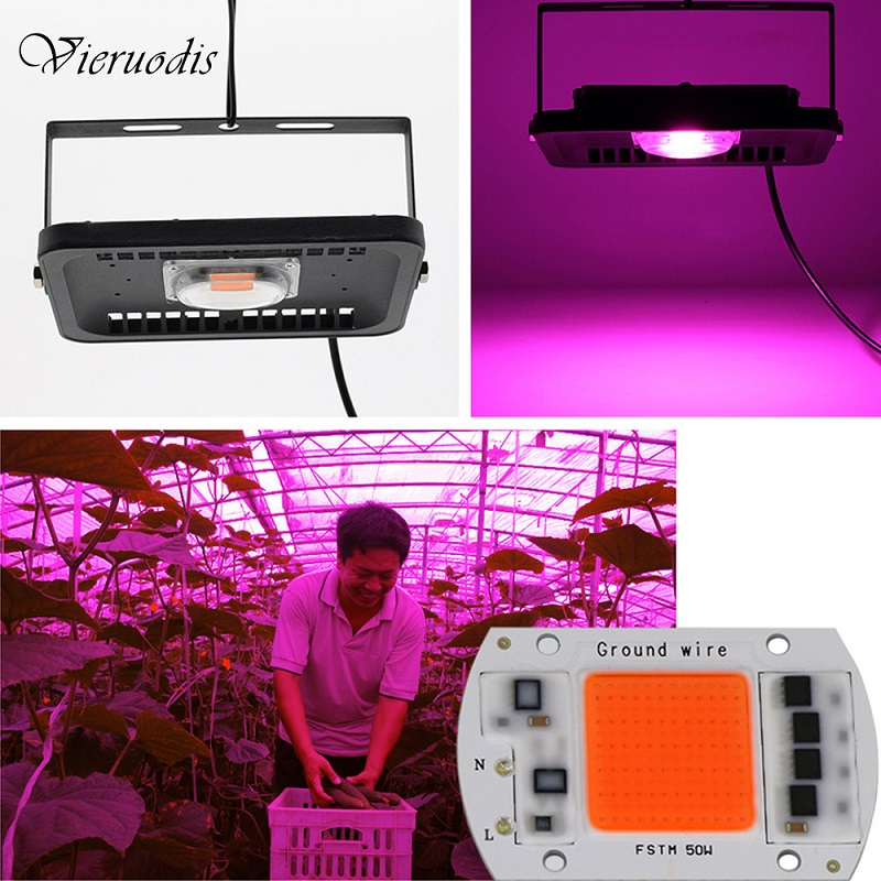 10W/20W/30W LED Grown Light Full Spectrum LED COB Chip Plant Flower Vegetable Planting Indoor Greenhouse Hydroponics