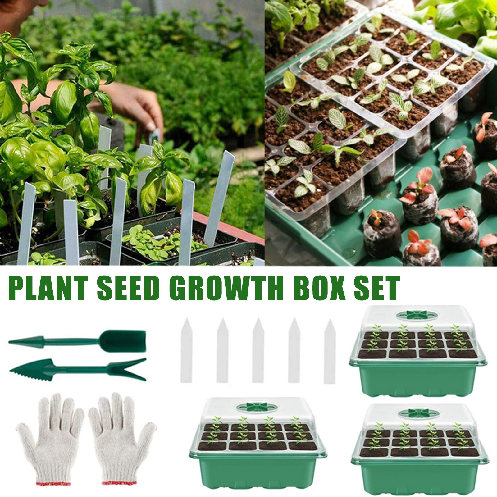 Seed Propagator Tray Mini Propagator Grower Nursery Tray for Seeds ...