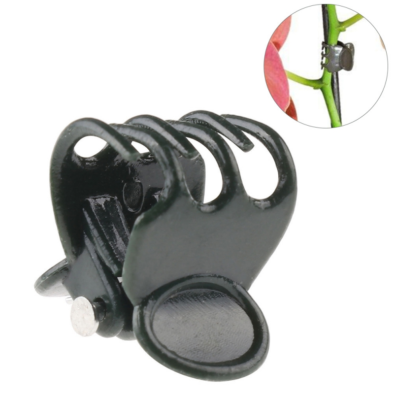 50pcs Plastic Plant Support Clips Orchid Stem Clip For Vine Support Vegetables Flower Tied Bundle Branch Clamping Garden Supply