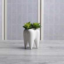4 Pcs/set Innovative White Ceramic Tooth Shape Succulent Plants Flower Pot Modern Design Planter Basket Vase Decor