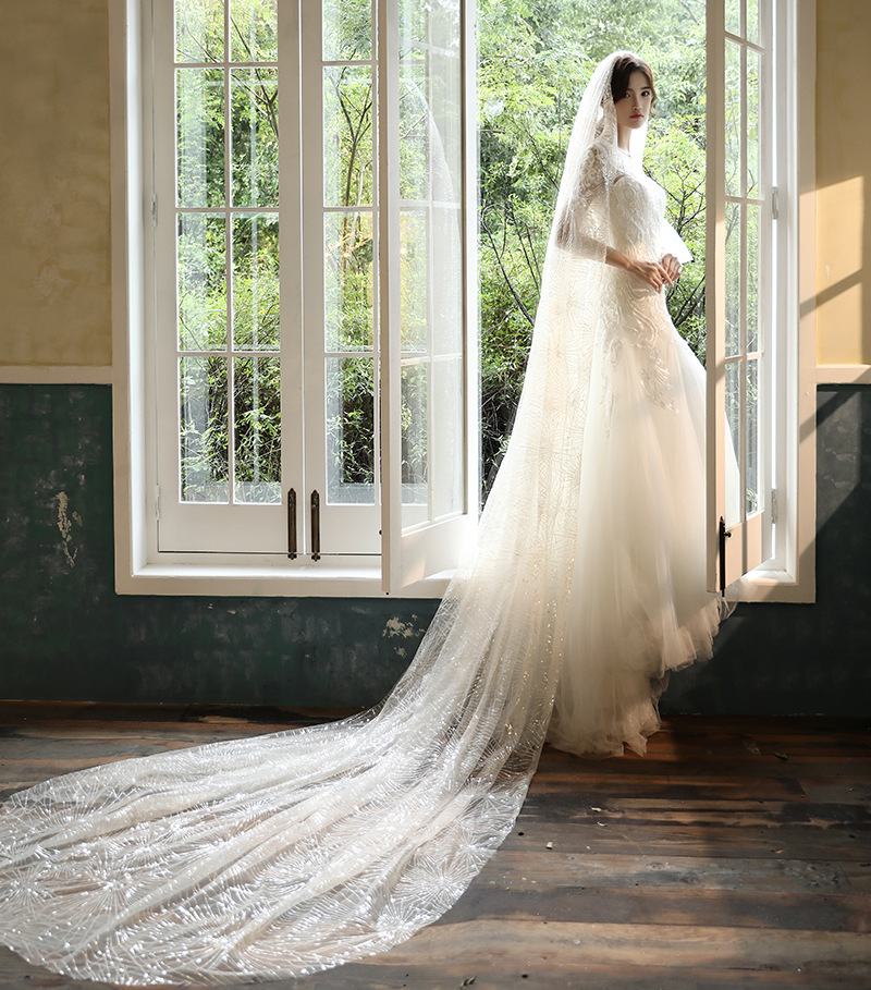 With Comb Bridal Wedding Long Pearl Veil One Layer 3M Bride Dress Accessories
