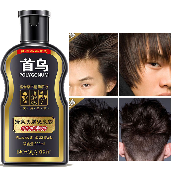 Polygonum Multiflorum Anti-dandruff Shampoo Anti-Dandruff Anti Hair Loss Moisturizing Refreshing Oil Control Black Hair Care