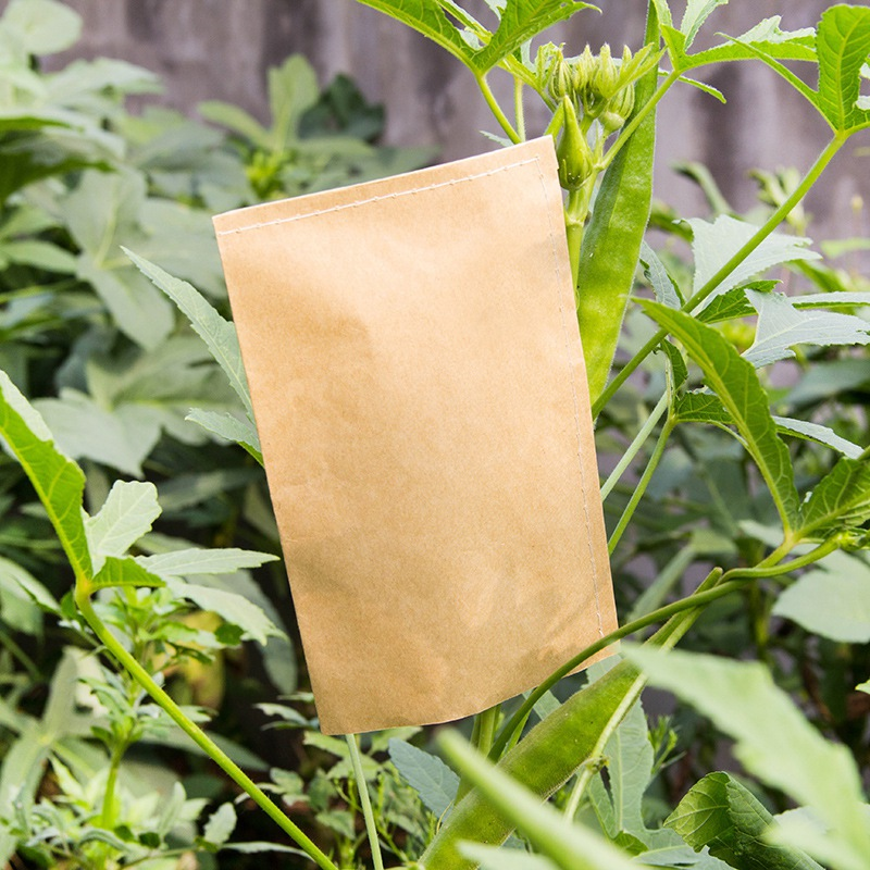 100 Pcs Mini Kraft Envelopes Bag For Plant Fruit Kraft Paper Bag Food Tea Small Gift Storage