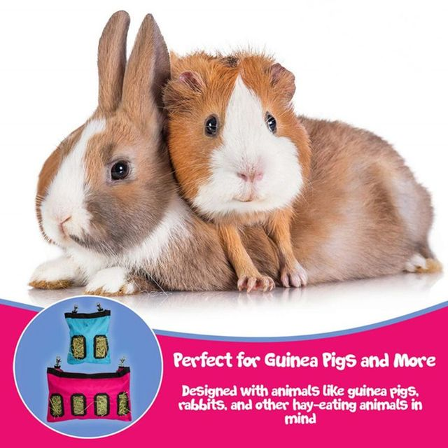 Hanging Hay Pouch For Rabbits & Guinea Pigs  2