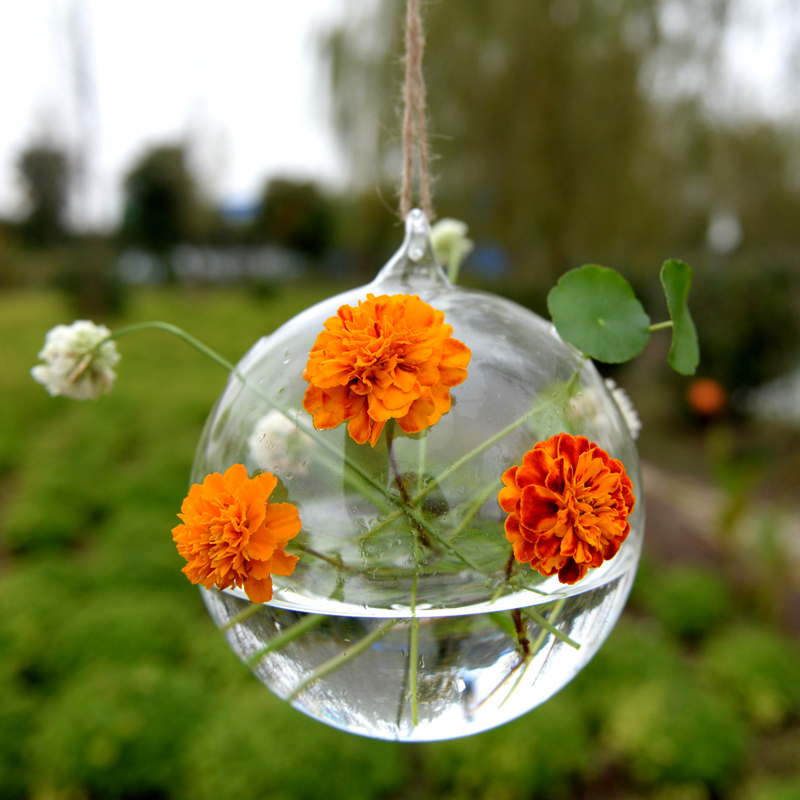 Flower Plant Clear Glass Vase Hanging Planter Terrarium Container Party Wedding Decor Bottle Pot Home Garden Ball Round Vase New