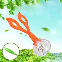 Kid Natur Exploration 1PCS Scissor Clamp mit Transparent Ball Pinzette Insekten Studie Werkzeug für Kinder Frühe Bildung Forschung Spielzeug