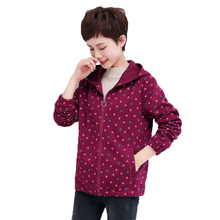 Autumn Spring Small Polka Dot Pattern Soft Hooded Jackets Women Casual Red Navy Blue Zipper Front Hood Coat Female Outerwear цена и фото