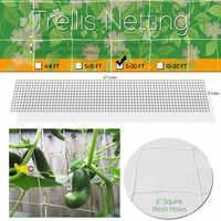 Mesh Polyester Net Loofah Netting For Morning Glory Vine Flowers Garden Plants Climbing Net Cucumber Vine Grow Holder