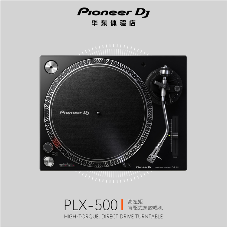 PLX-500 DJ Rubbing Plates Beginner Turntables Disk Reproducer LP Record Player