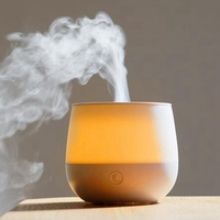 Usb Mini Table Air Humidifier Essential Oil Diffuser Ultrasonic Aromatherapy Slient with Led Non Cotton Stick Filter