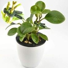 20Pcs/Set Practical Durable Plastic Garden Plant Flower Vegetable Bush Clips Ties Supplies Clip