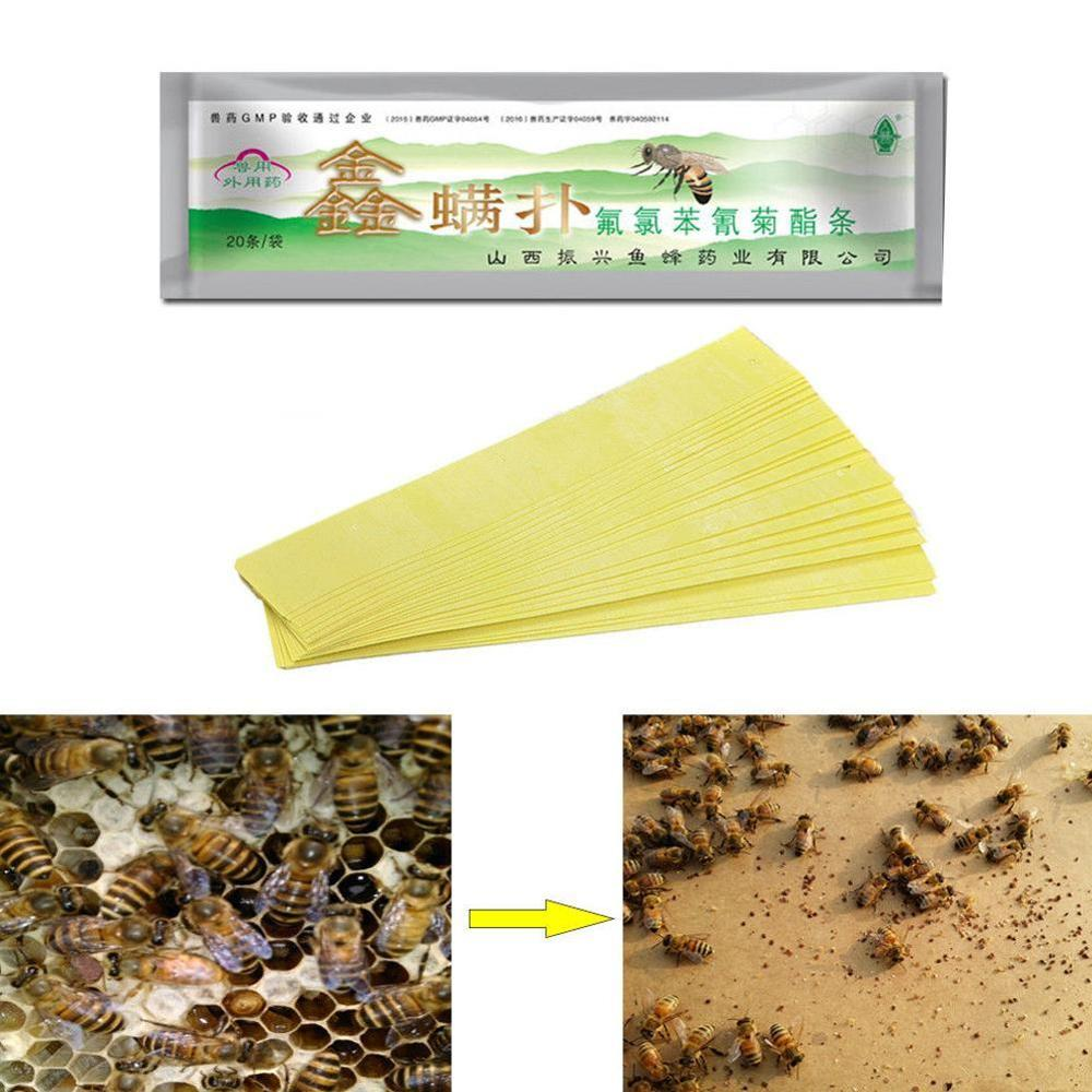 20pcs/bag Varroa Strips Fluvalinate Bee Mite Killer Treatment Tool Beekeeping Pest Control For Drop Shipping