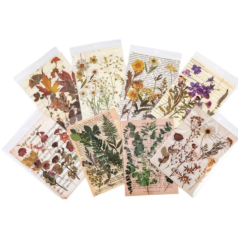 10 Sheets Nature Plant Hearb Leaf Transparent Sticker Decoration Diy Ablum Diary Scrapbooking Label