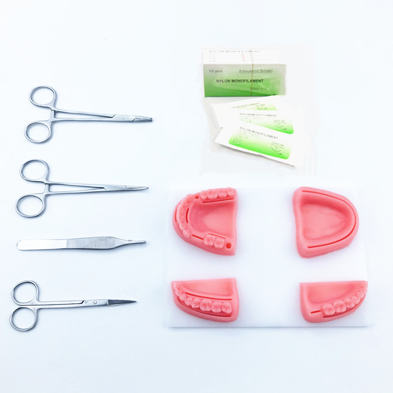Free Shipping Dental Supply Simulation Oral Suture Model With Needle Gum Suture Teaching Training Tools Skill Practice