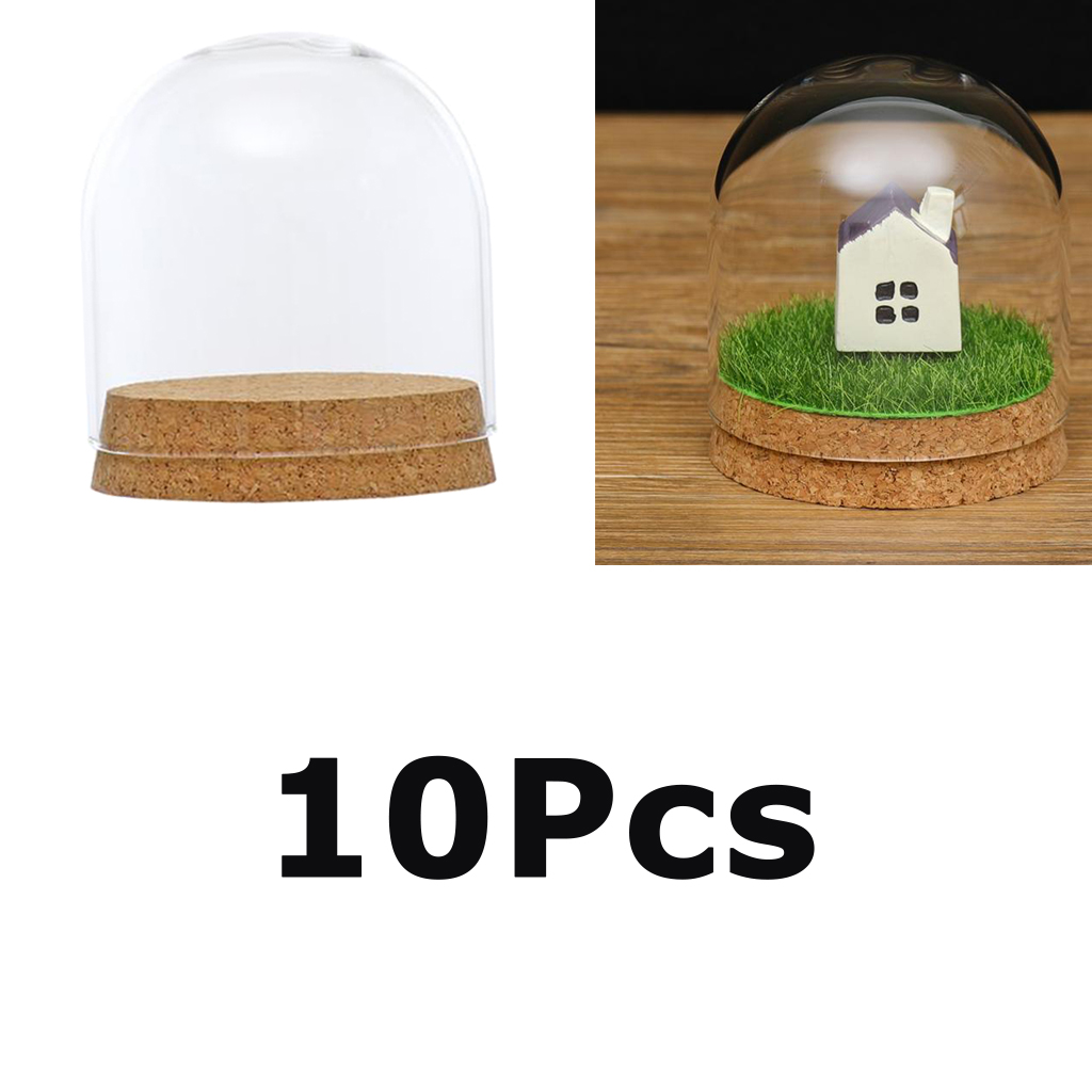 8x8cm Cloche Jar Glass Cover Terrariums w//Wood Cork Dry Flower Vase 8x8cm