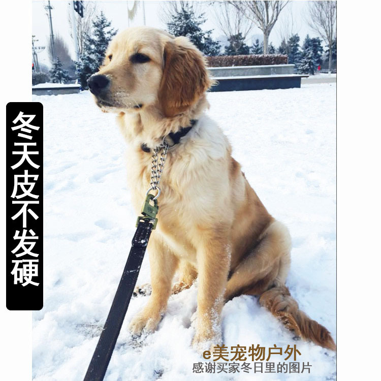 Labrador Dog Lado Stainless Steel P Pendant Golden Retriever Husky Genuine Leather Neck Ring Dog Universal Collar Dog Collar Col