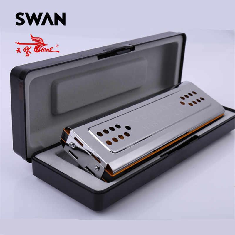 Cigno SW24-12A Doppio Lato Armonica C/G Tasti 24 Fori Bordo di Rame di Copertura In Acciaio Inox Consiglio Tremolo Armonica In scatola di plastica