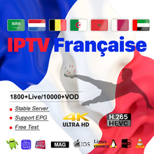 IPTV France Arabic Algeria IPTV Subscription M3U A