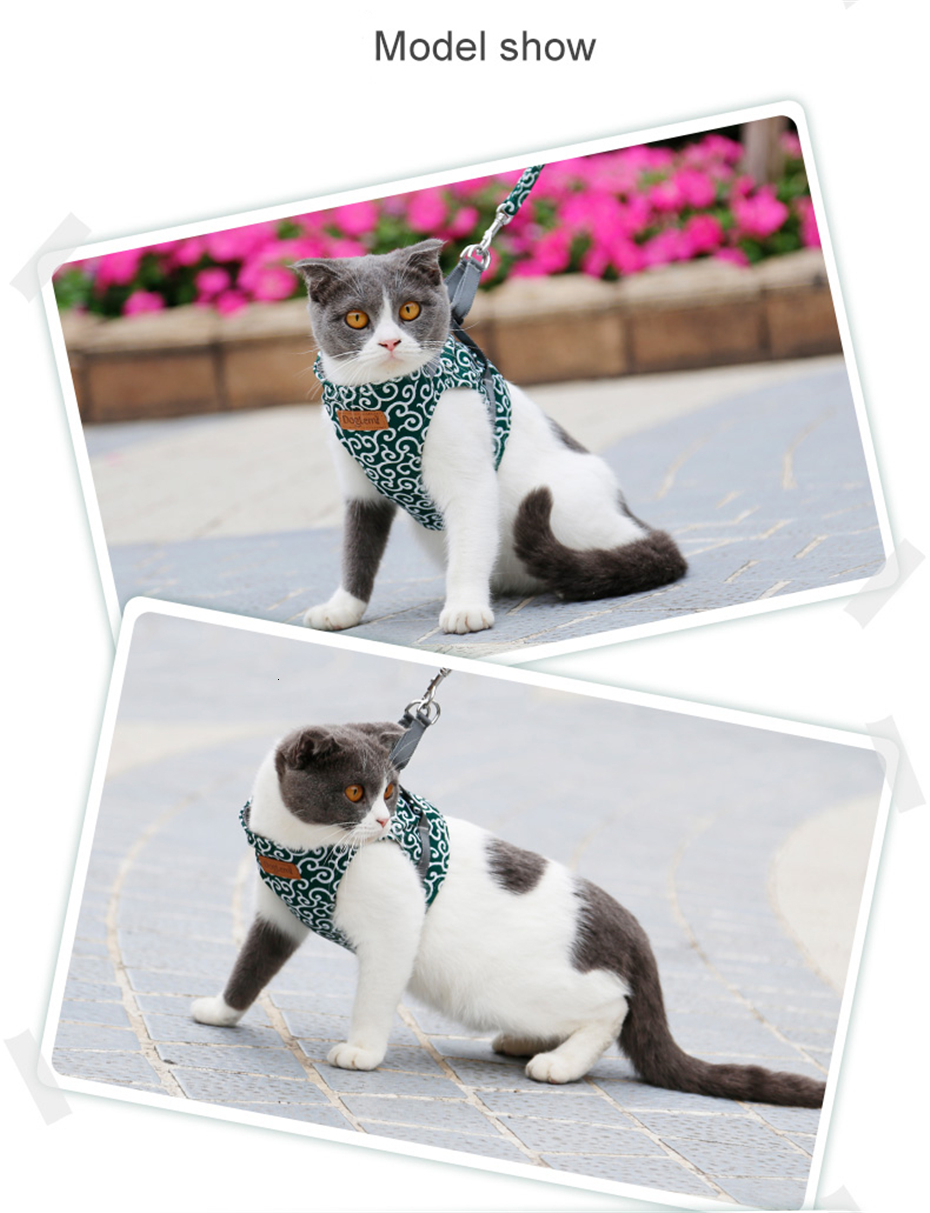 Peitoral de Gato | Colete Jaqueta para Gatos | Frete Gratis