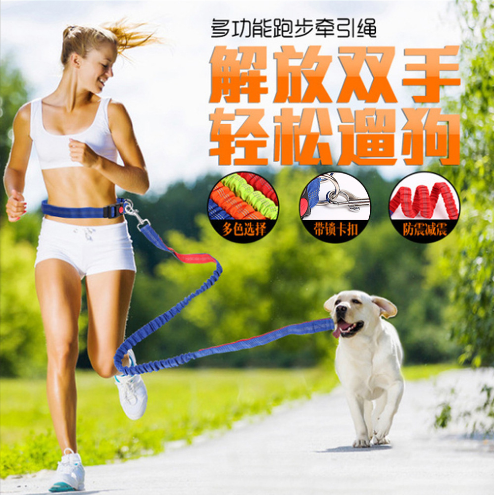 Elasticity Running Pendant Belt Traction Rope Fixed Telescopic Safe Chain Pet Dog Supplies Night Parkour