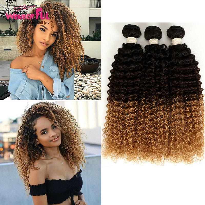 Ombre Kinky Curly Human Hair Extensions Blonde Brown Curly Bundles Brazilian Weaves Natural/1B/4/27/30/99J 10-28 Inch
