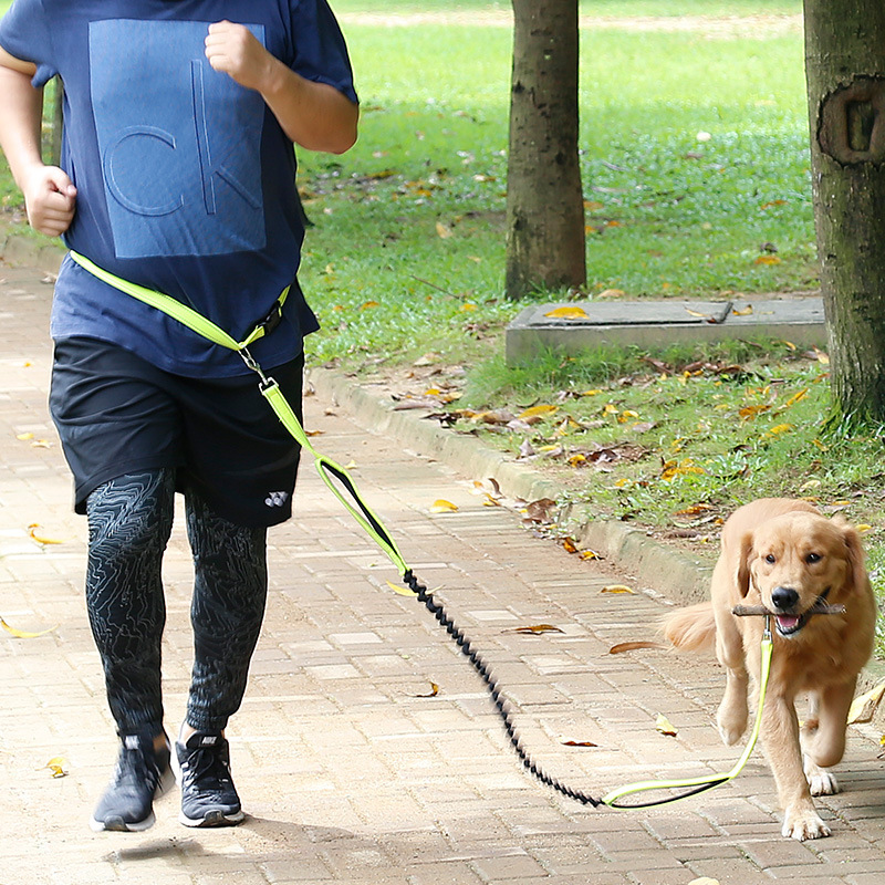 Pet Running Hand Holding Rope Dog Nylon Reflective Drawstring Multi-functional Dog Running Hand Holding Rope Sub-