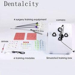 Un conjunto completo de simulador de entrenamiento de cirugía laparoscópica, fórceps de sujeción de aguja, fórceps de separación, clip de separación,