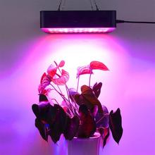 лучшая цена Led Grow Light Full Spectrum 1000W Plants Indoor Growing Lamps Plant Growth Lights Tent Garden Fito LED Fitolampy Fitolamp Phyto