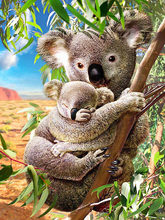 Bricolage diamant peinture Koala mère tenant son bébé sur l'arbre
