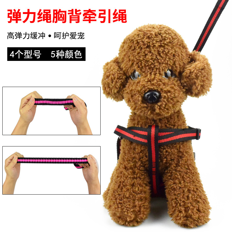 Elasticity Hand Holding Rope Pet Traction Rope Traction Belt Xiong Bei Tao Dog Collar Medium Large Dog Chain