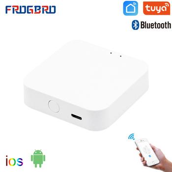 FROGBRO wielomodowy komputer sterujący domem inteligentnym WIFI Bluetooth Mesh Hub sterowanie głosem praca z Alexa Google Home inteligentny koncentrator domowy tanie i dobre opinie Sig Mesh Bluetooth Gateway