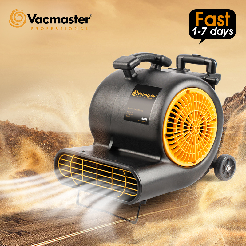 Vacmaster Professional Dryer Powerful Carpet Dryer For Carpet Cleaning With Blower For House Hotel Industrial Ground Blow Dryer