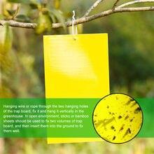 2021top decoração da casa armadilhas pegajosas amarelas de dupla face para voar inseto da planta como mosquitos de fungos