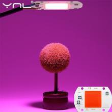 Led 전체 스펙트럼 칩 20 w 30 w 50 w 220 v cob led 식물 성장 식물 빛 상자 모 종 및 꽃 성장 램프에 대 한 빛 칩 성장