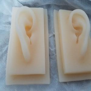 Image 2 - 1 пара 1:1 моделей ушей из мягкого силикона для имитации, акупунктурные принадлежности, модель практики, медицинские Обучающие инструменты