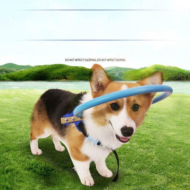 Tyteps mascota ciega Anti colisión anillo Scorpion catarata Animal protección círculo guía perro arnés para cachorros pequeños perros Yorkies