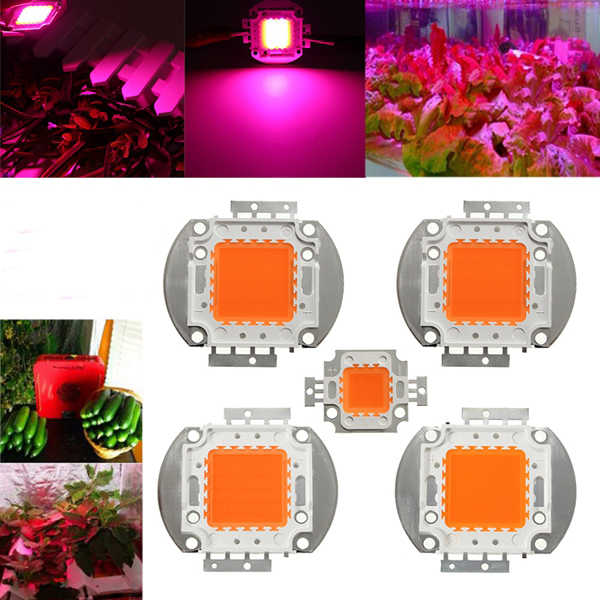 LED Chip Grow Light 10W 20W 30W 50W 100W Full Spectrum Plant Lamp Diodes Growth Lighting for Garden Flowering Hydroponics System