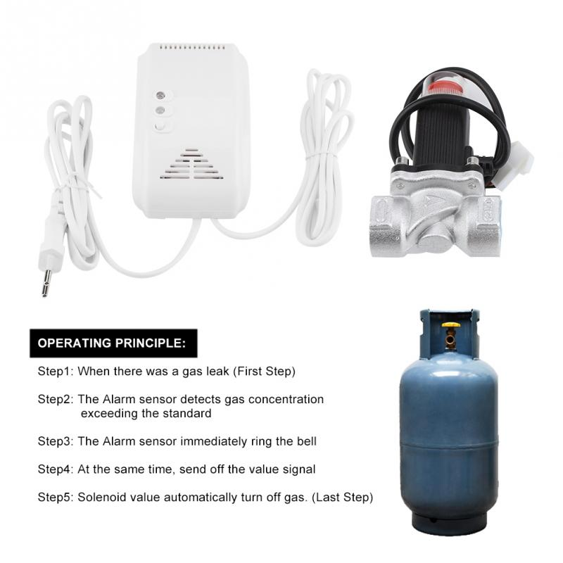 Hot Sale Hot Natural Gas Alarm Sensor Leakage Detector House Safety Device With Solenoid Valve