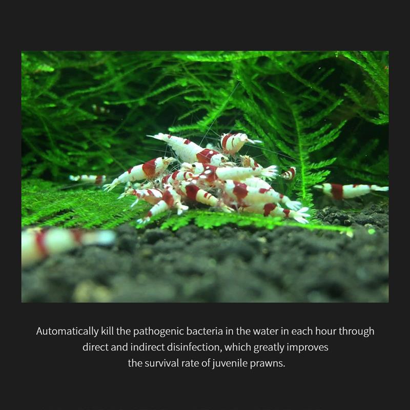 Image 5 - 3 го поколения Chihiros Doctor 3 в 1 удаление водорослей стиль электронный ингибит аквариума Рыбное растение Креветки Танк-in Инструменты для чистки from Дом и животные