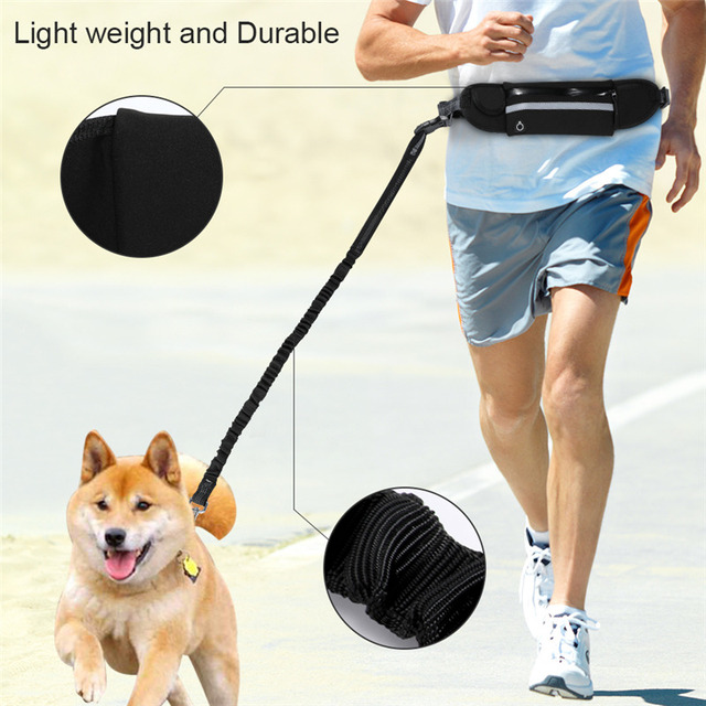 Nylon Dog Running Leash Hands Free Walking Show Lead Leash For Small Medium Dog Puppy Cat Pet With Retractable Bungee Waist Belt 4
