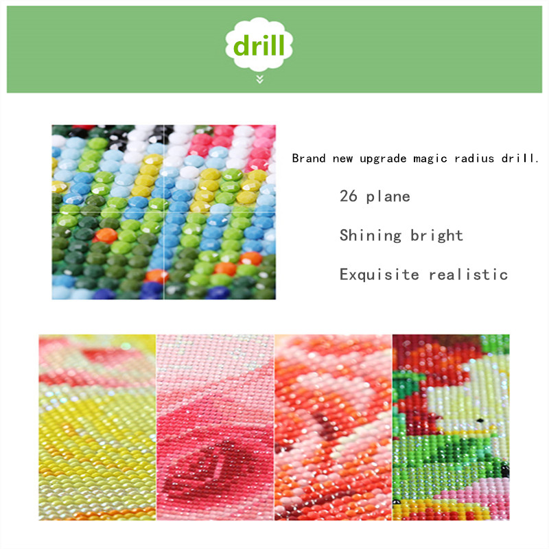 Full round diamond 5D DIY diamond painting quot Colorful animal quot 3D cross stitch oil painting animal diamond mosaic decoration gift in Diamond Painting Cross Stitch from Home amp Garden