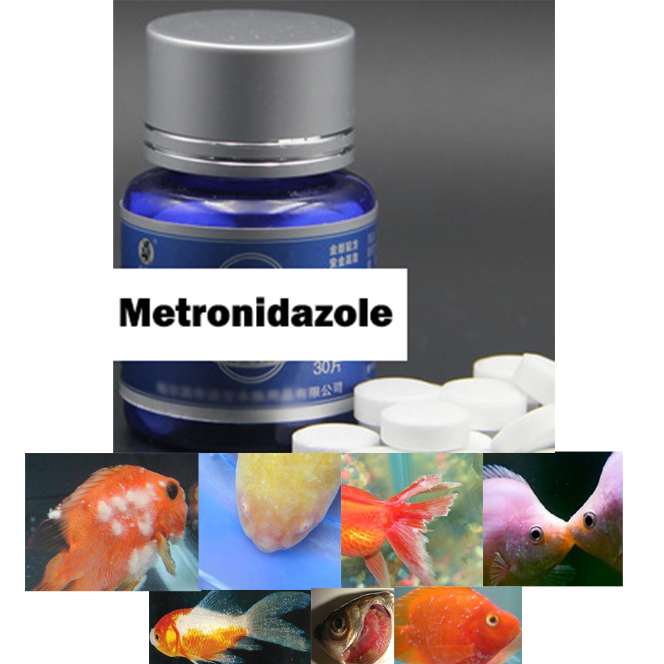 ❤️ NEW aquarium ornamental fish feed discus brightening food koi goldfish  food enhancer color bit