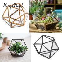 MagiDeal Hanging Terrarium 2 Pack Small Mini 5inch Glass Hanging Planter Plant Pot Terrariums Garden&Lawn