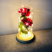Two Roses in A Glass Dome Valentine's Day Birthday Gift LED Beauty Rose and Beast Battery Powered Red Flower String Light Lamp