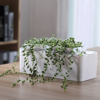 Smart Herb Garden Kit Nursery Pots High end Desk Garden Plants Flower Hydroponics Grow for Indoor Office Hotel Club