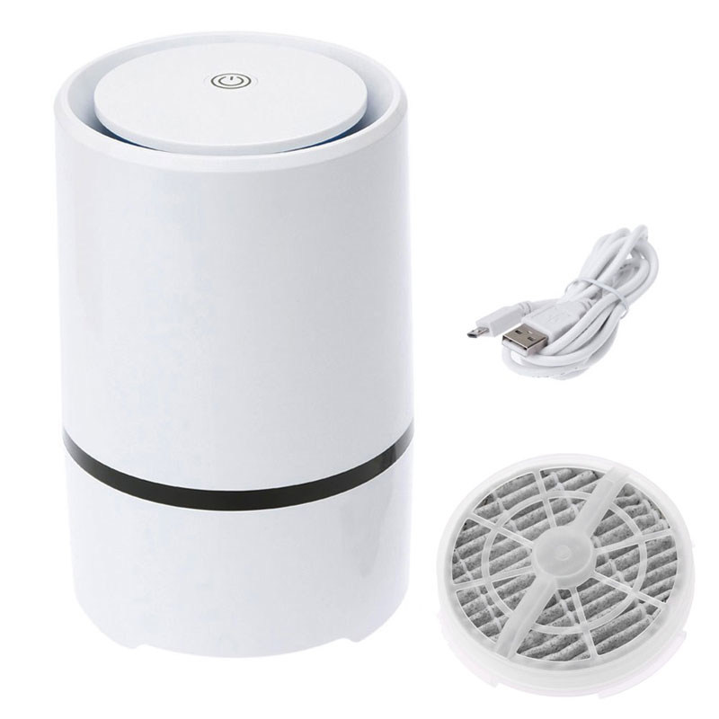 Home Air Purifier with True HEPA Filter for Allergies and Pets Smoke Mold Germs and Dust