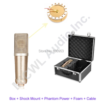 AK47 Large Diaphragm Studio Condenser Cardioid Recording Microphone Mic with Box Shock mounts Phantom Power Cable Foam