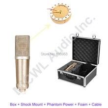 Большая диафрагма ak47 студийный конденсатор Кардиоидная фотомагнитола