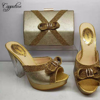 Capputine Nigerian Elegant Woman Gold Shoes And Bags Set For Wedding African Pumps 10C Party Shoes And Bag Set 5Colors BL155C