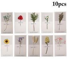 10PCS Dried Flowers Greeting Card Thanksgiving Blessing Birthday Mothers Day Creative Gypsophila Sunflower Calla
